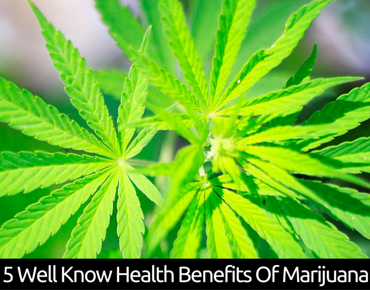 5 Well Know Health Benefits Of Marijuana