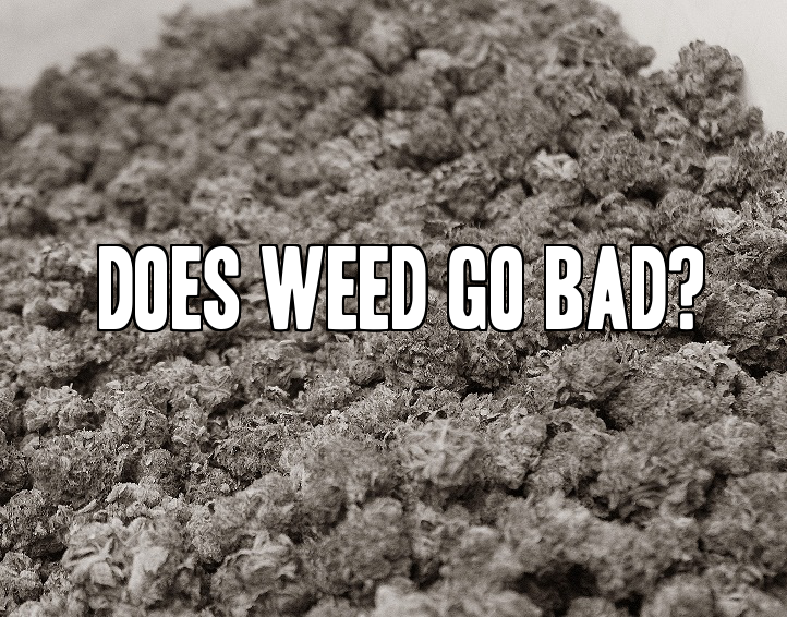 Does weed go bad?